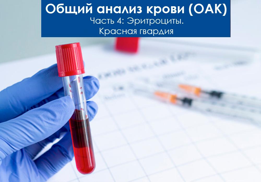Общий анализ крови (ОАК). Эритроциты