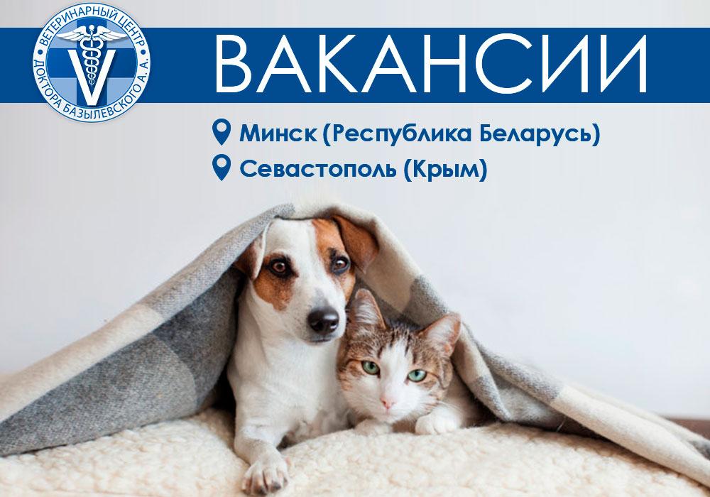 Вакансии в новых филиалах Базылевского