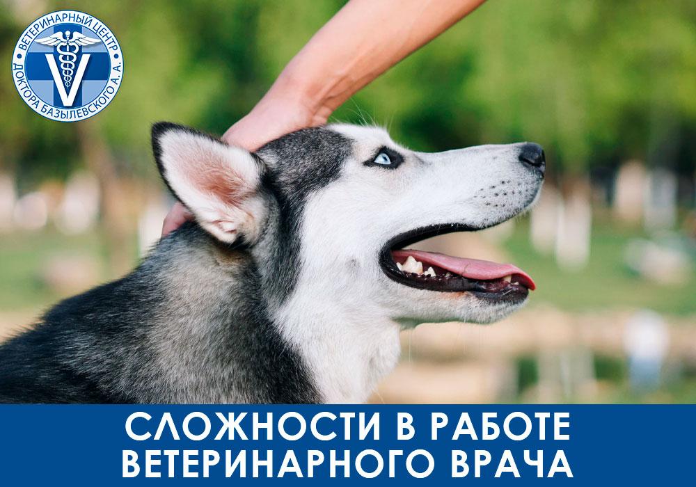 Сложности в работе ветеринарного врача